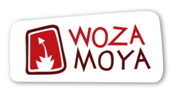 Building Futures: Woza Moya